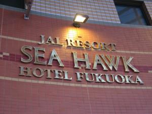see-hawk-028