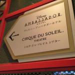 ciraue-due-soleil-001