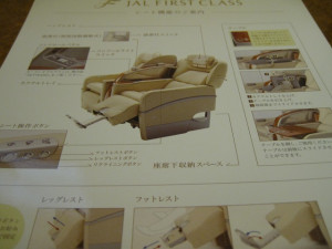 jal-firast-dome-012