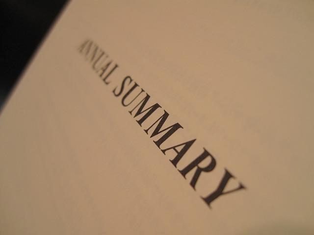 amex-ann-2008-001