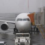 JAL ビジネスクラス 成田→大連 システム障害練習 搭乗記