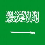 サウジアラビア王国  ビザの記載方法
