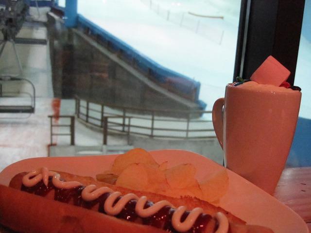 ski-dubai-016