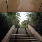 al-maha-resort-spa-014