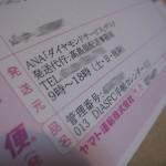 ana-2010-dia-001
