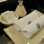 bt-bkk-one-bed-suite-022