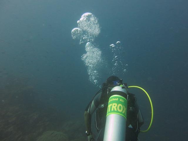 huvafen-fushi-diving-027
