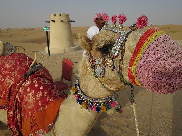 arabian-night-village-act-009