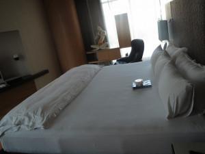 maduzi-suite-010